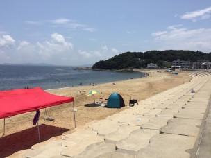 今日の篠島